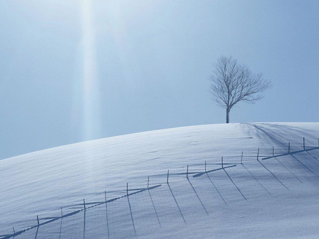 Una montaña con nieve blanca y pura