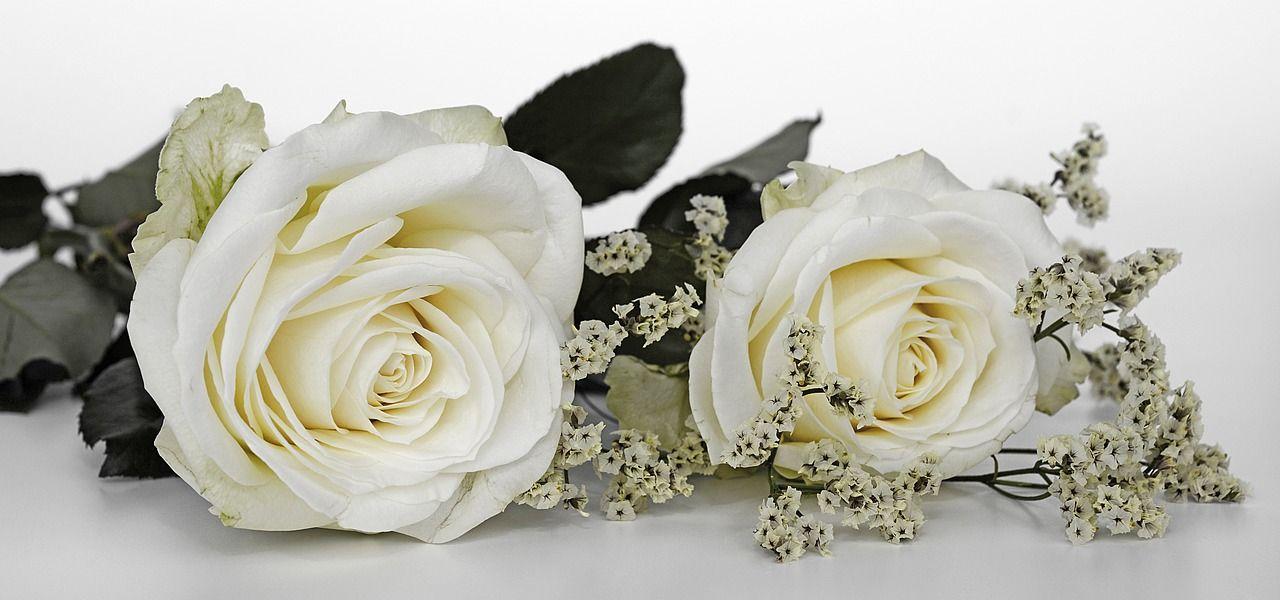 Significado de las rosas blancas en las bodas
